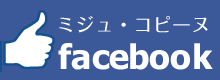 fb_ミジュ